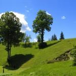 IMG 0453 150x150 - Zeleni turizem